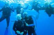 Family snorkel trip to Columbia Shallows, Palancar Gardens and El Cielo  reefs